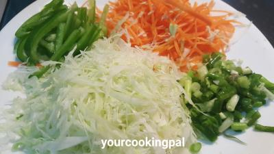 veg-spring-rolls-000003